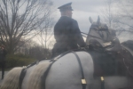 The soldier leading the riderless horse went right by us - it's cloudy because I was behind a window.
