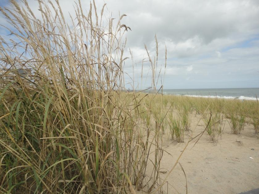 Bethany Beach, Deleware
